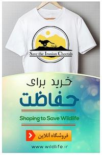 فروشگاه محصولات حیات وحش انجمن یوزپلنگ ایرانی