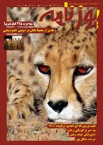 نشریه داخلی انجمن یوزپلنگ ایرانی