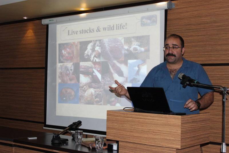 سمینار حیات وحش با موضوع پلنگ های ماهواره ای ایران