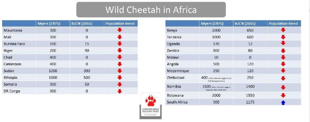 مقایسه تغییرات جمعیت یوزپلنگ آفریقایی از سال 1975 تا 2016