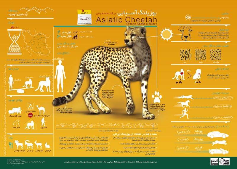 Saving Natural Resources Poster