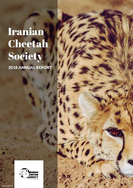 Iranian Cheetah Society | to save wildlife