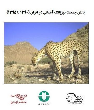 ICS_Cheetah