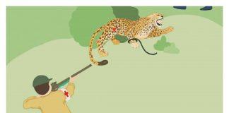 راهنمای صحرایی نجات گوشتخواران بزگ جثه از تلههای سیمی