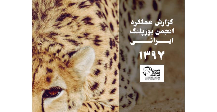 گزارش عملکرد سال ۱۳۹۷ انجمن یوزپلنگ ایرانی